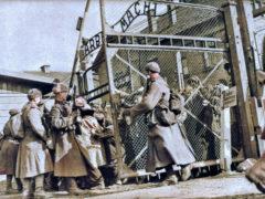 La Libération du camp d'Auschwitz